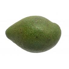 Avocado Ugandan Each