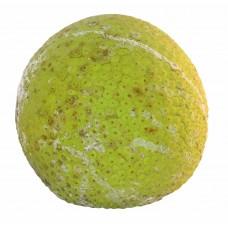 Breadfruit (Half)