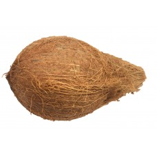 Dried Coconuts Each