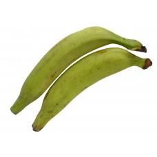 Green Plantain (Pack of 3)